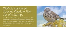 WWF Endangered Species Meadow Pipit