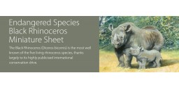 Endangered Species: The Black Rhinoceros