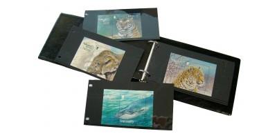 Endangered Species Miniature Sheet Souvenir Album