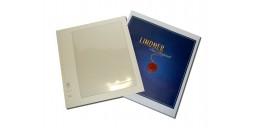 Lindner 3 leaf pack for sheets of 10