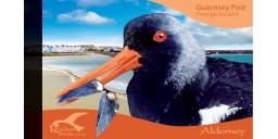 Resident Birds Part 4