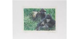 Joel Kirk Print - Moutain Gorilla