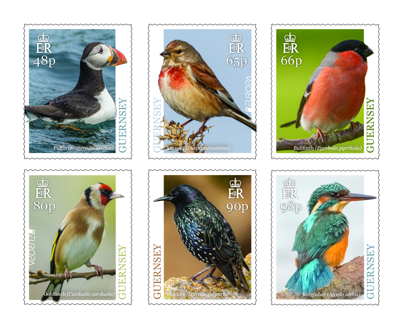 Europa stamps depict singing Bailiwick birds