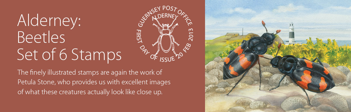 Alderney Beetles
