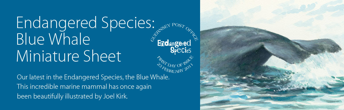 Endangered Species: Blue Whale