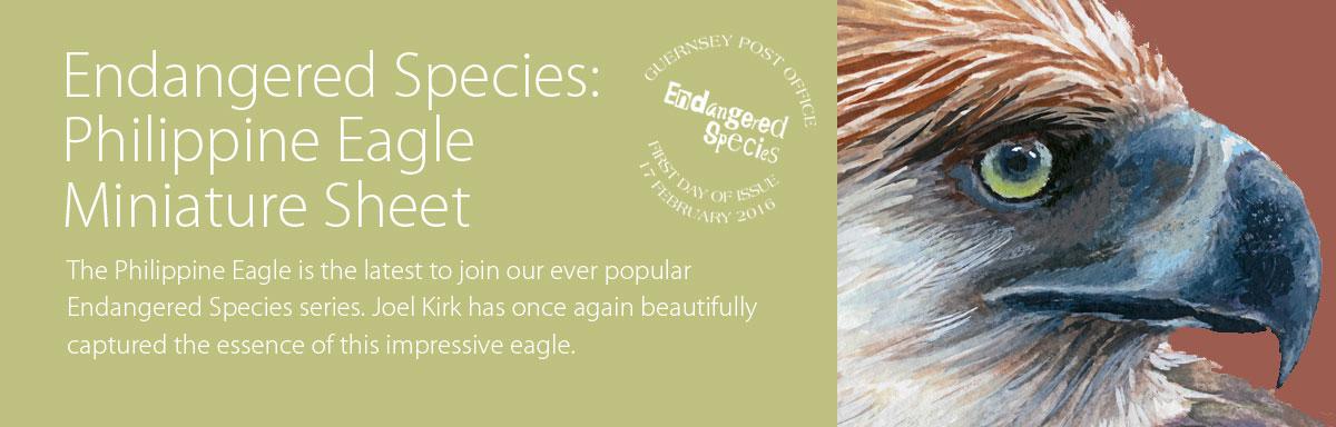 Endangered Species Philippine Eagle