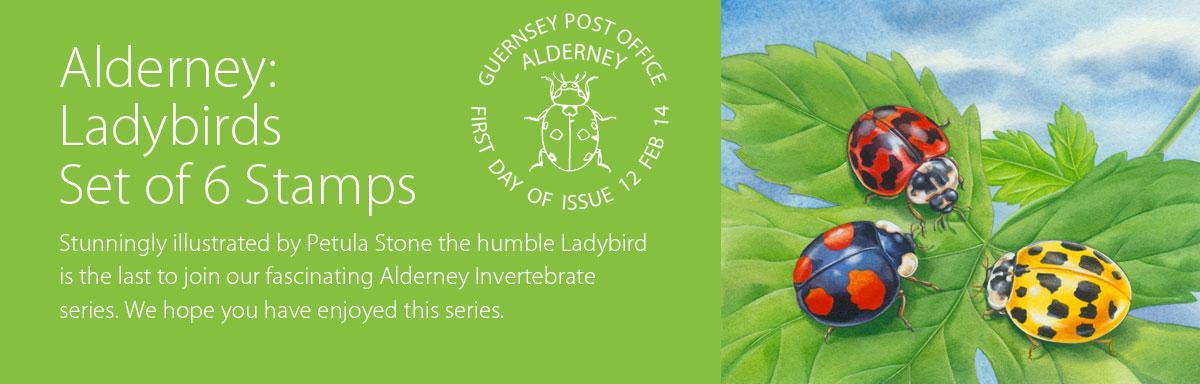 Alderney Ladybirds