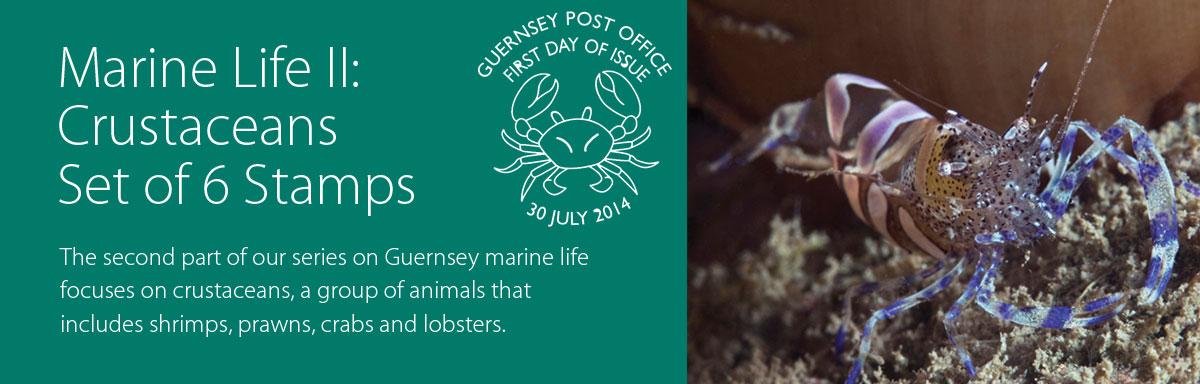 Marine Life II Crustaceans