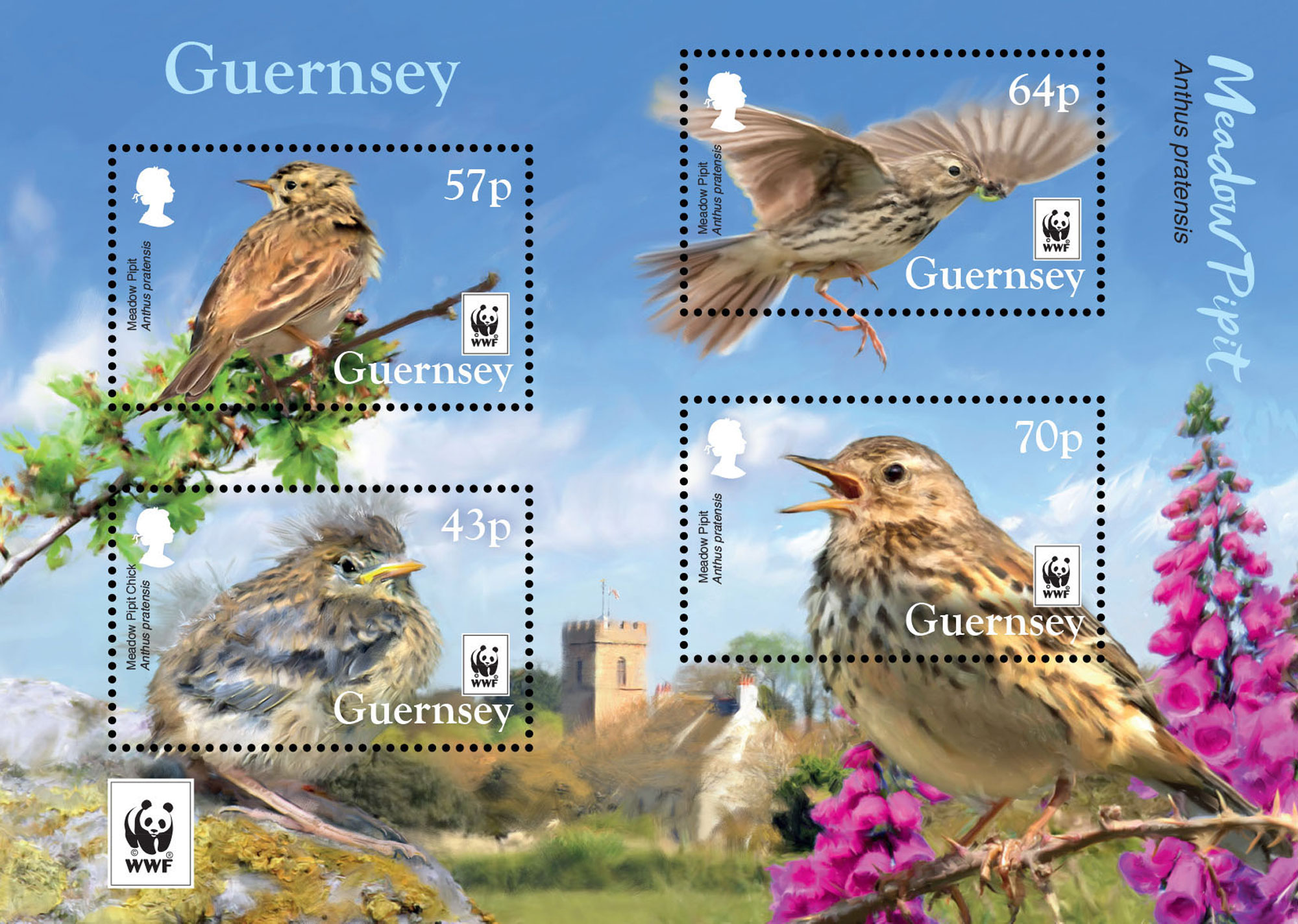 Guernsey Post collaborates with WWF for Endangered species stamps