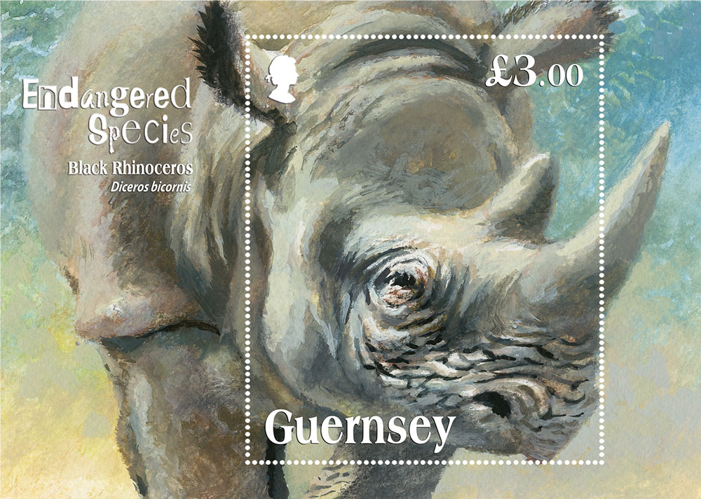 Guernsey Post stamp depicts critically endangered Black Rhino