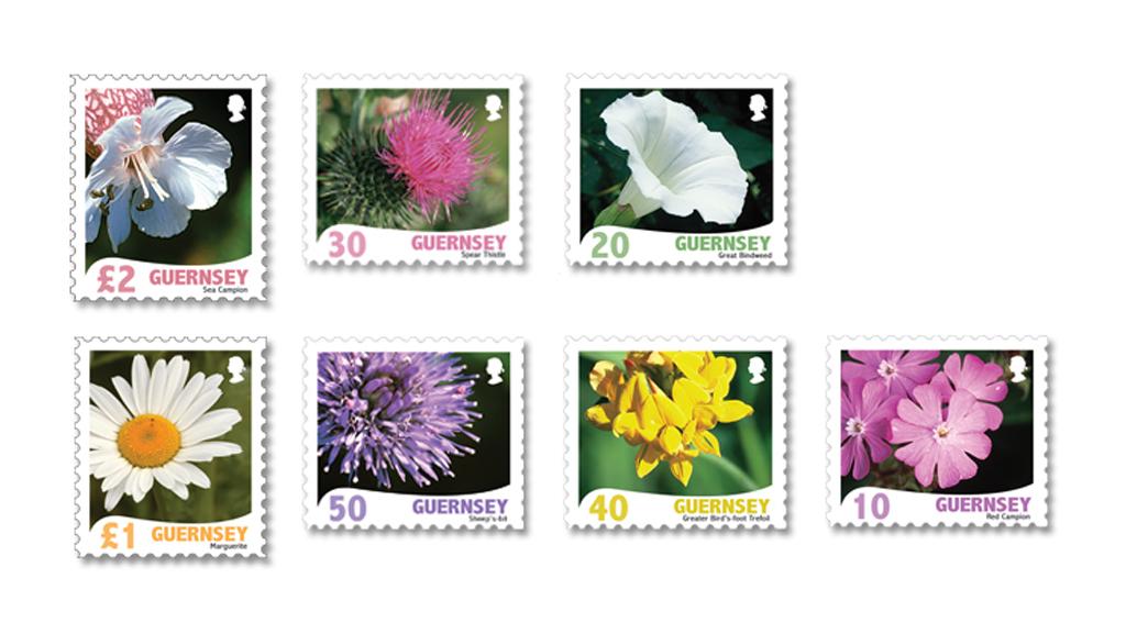 Raymond Evisons Wild Flora Definitives