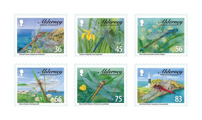Alderney Dragonflies
