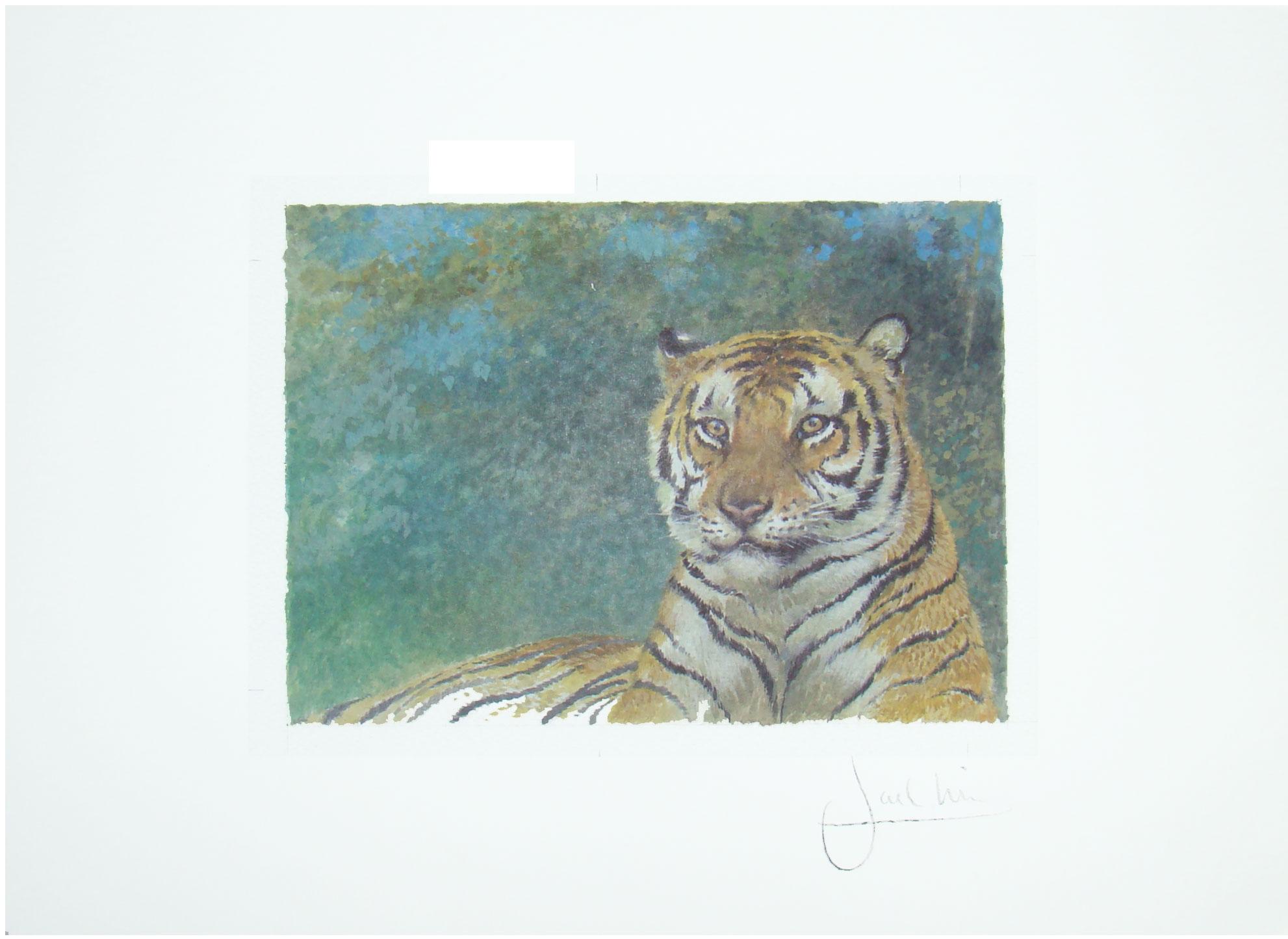 Joel Kirk Print - Bengal Tiger in green leaves